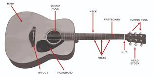 acoustic guitar buyer u0027s guide u2013 the vault at music u0026 arts