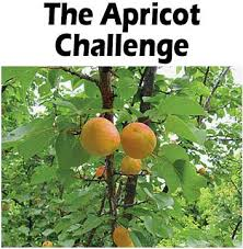 What Fruit Trees Grow In Texas - apricot jpg