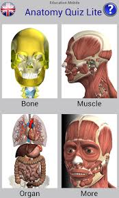 Human Anatomy Images Free Download Anatomy Quiz Free Android Apps On Google Play
