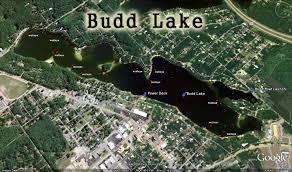 Michigan Dnr Lake Maps by Houghton Lake Walleye Report Budd Lake
