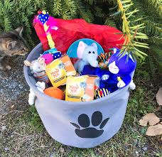 Pet Gift Baskets The Perfect Gift Basket For Any Cat Lover U2013 The Bandit Lifestyle