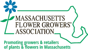 massachusetts flower growers association massachusetts grown