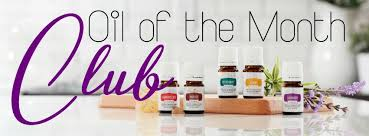 month club of the month club the bunch with erin jones