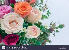 vase of roses bouquet on white background set of beautiful flower