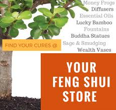 use the feng shui colour wheel