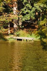 Mississippi scenery images Stunningly beautiful fall foliage at mississippi state parks jpg