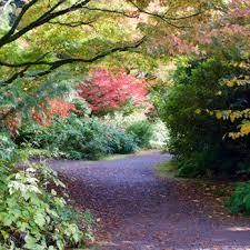 Botanical Gardens Seattle Kubota Garden 736 Photos 193 Reviews Botanical Gardens