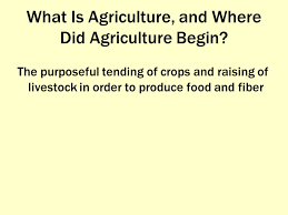 agriculture chapter 11 what is agriculture and where did