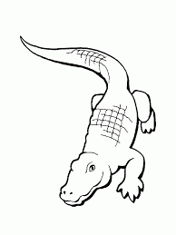 image cartoon alligator baseballer coloring pages
