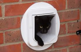 Exterior Cat Door Sureflap Pet Door Mounting Adaptor Large Size Aussie Pet Doors