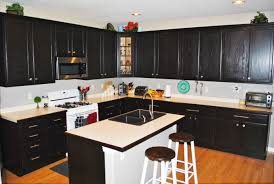 White Kitchen Cabinets With Black Island by Custom Black Kitchen Cabinets Roy Home Design