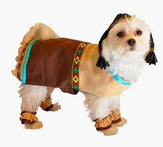the most adorable dogs dressed in thanksgiving costumes paperblog