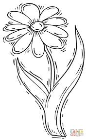 daisy coloring page daisy flower coloring page free printable
