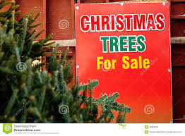 christmas tree sale stock photo image 45839639