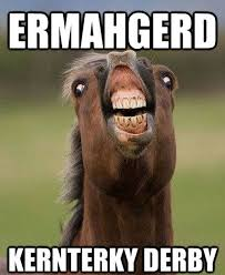 funny horse memes 02