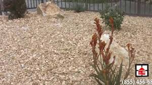 family garden quotes novel remodeling drought landscaping los angeles ca free