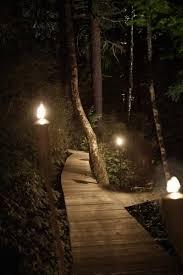37 best landscape lighting images on pinterest exterior lighting