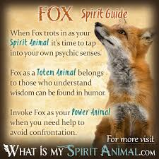 how to find your spirit animal the complete guide