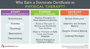 doctorate of physical therapy dpt programs