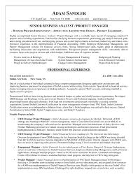 Systems Analyst Resume Example by Best Business Analyst Resume Example Template