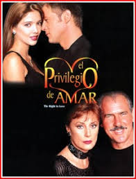 Seeking Series Y Novelas El Privilegio De Amar