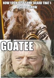 Goatee Meme - now your just some beard that i used to grow goatee i used to