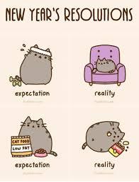 Pusheen Cat Meme - new year s resolutions pusheen meme and pusheen cat