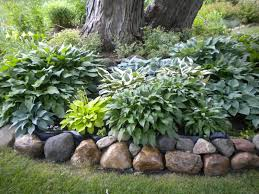 best 25 landscaping around trees ideas on landscaping