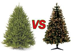 real christmas trees real christmas trees vs christmas trees a world