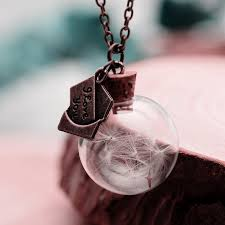 floating locket necklace chains images Real plants glass floating lockets necklaces chain gift buycoolprice jpg