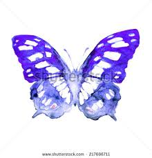 butterfly painting stock images royalty free images vectors