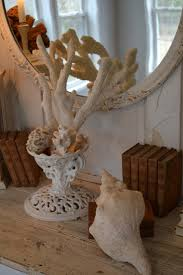 decorating with sea corals 34 stylish ideas digsdigs decorating with sea corals 34 stylish ideas digsdigs design