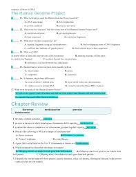 dna and rna worksheet worksheets dna and rna worksheet chicochino