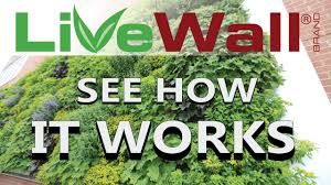how the livewall living wall system works youtube