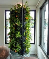 giardini interni casa giardino verticale in casa foto 24 40 design mag