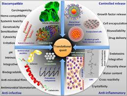 frontiers the quest for anti inflammatory and anti infective