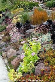 Big Rock Garden Large Rock Garden Ideas Garden Ideas Big Rock Garden Ideas