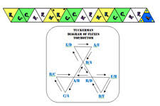 zen origami the flexagon portal