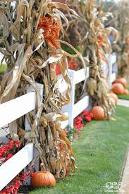 Thanksgiving Outdoor Decorations by Fall Outdoor Decor