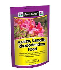 Azalea Topiary Buy Azalea Camellia U0026 Rhododendron Food For Sale Online From