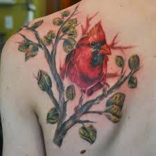 Tattoos Of - best 25 cardinal tattoos ideas on cardinal