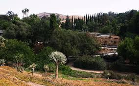 Ucr Botanical Gardens Of California Riverside Botanic Gardens