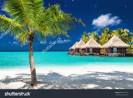 over water bungalows on tropical island stock photo 580518970