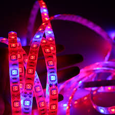Led Strips Light by 1 5m Waterproof 5050 Grow Led Strip Light 4 1 4 Red 1 Blue Full
