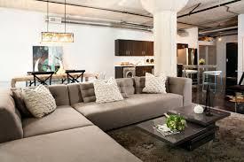 Sofa Pillows Contemporary by Modern Throw Pillows For Sofa 19 With Modern Throw Pillows For
