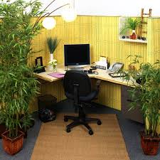 What Plants Are Cubicle Friendly by Office Spaces Amazing Cubicles With Modern Style
