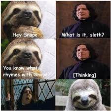 Sloth Jokes Meme - reddup r slothmemes