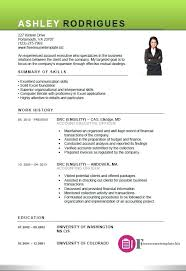 exle executive resume free resume template executive account executive resume template 4