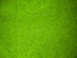 green textured wall background photohdx