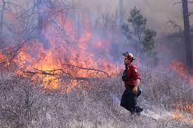 British Columbia Wildfire Service by B C Wildfire Situation U0027still Deteriorating U0027 Official Says